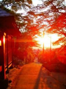 飯盛山参道の夕景