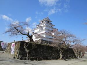 2013年4月15日の鶴ヶ城と桜♪
