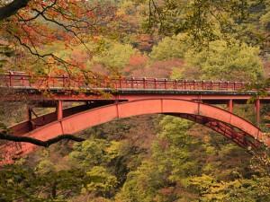 9185雪割橋