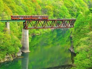 15935新緑の第三大川橋梁。